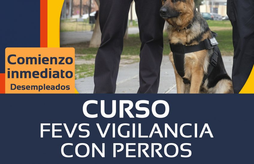 Curso FEVS vigilancia con perros - alpe formación