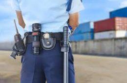 Curso vigilante de seguridad-www.alpeformacion.es