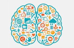 Curso de neuromarketing-www.alpeformacion.es